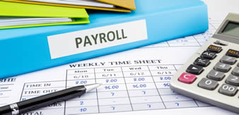 Our Payroll Services enables you to spend time doing what you do best - running your company.